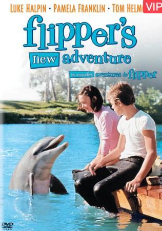 海豚新历险记