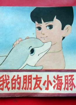 我的朋友小海豚